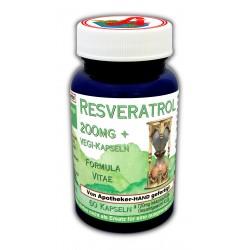 Resveratrol 200mg plus Kapseln
