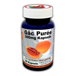 GAC Puree 300mg Kapseln