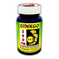 Ginkgo 240 MG 1x1 täglich...