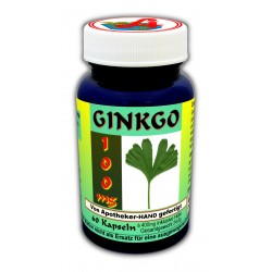 Ginkgo 100 mg Kapseln