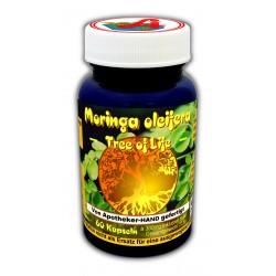 Moringa oleifera Kapseln