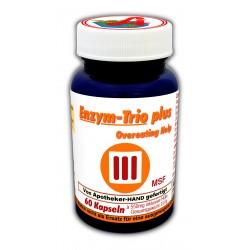 Enzym Trio Plus Kapseln